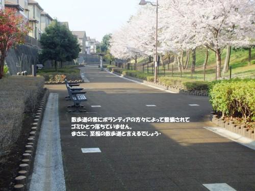 至福の散歩道