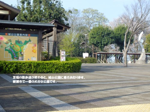 城山公園 1
